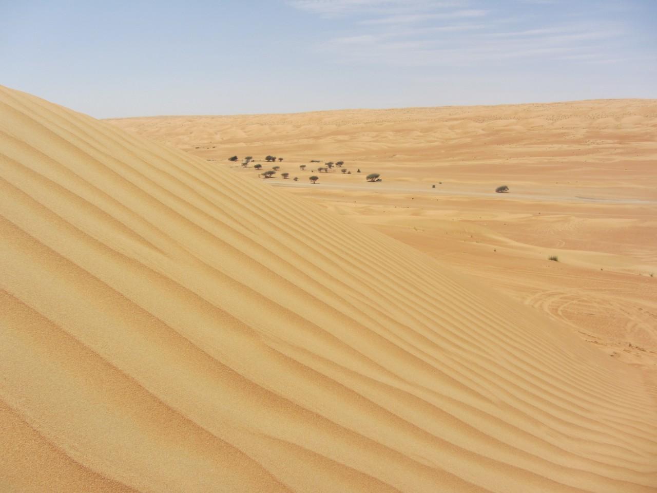 Proposte diving e deserto in Oman